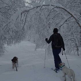 Eudald – Raquetes de neu