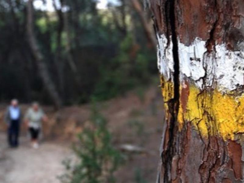 Anar a la muntanya II: La senyalització dels camins